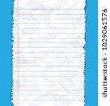 ripped white paper edge on blue ...   Shutterstock .eps vector #1029061576