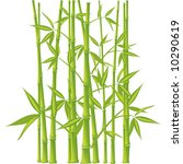 bamboo   vector illustration ... | Shutterstock .eps vector #10290619