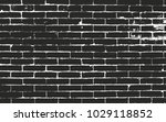distressed overlay texture of... | Shutterstock .eps vector #1029118852