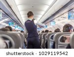 interior of commercial airplane ... | Shutterstock . vector #1029119542
