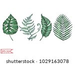 vector illustration sketch  ... | Shutterstock .eps vector #1029163078