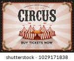 vintage horizontal circus... | Shutterstock .eps vector #1029171838