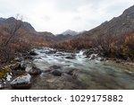 a rushing creek rushing through ... | Shutterstock . vector #1029175882