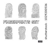 set of fingerprints | Shutterstock .eps vector #1029200536