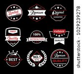 satisfaction retro badge logo... | Shutterstock .eps vector #1029239278