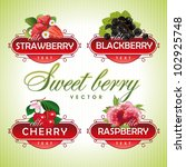 sweet berry. strawberry ...   Shutterstock .eps vector #102925748