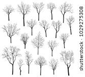 winter trees vector set | Shutterstock .eps vector #1029275308