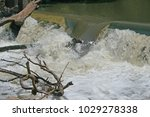 Water Cascading Over A Wier In...