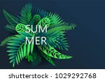 summer background with tropical ... | Shutterstock .eps vector #1029292768