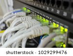 network panel  switch and cable ... | Shutterstock . vector #1029299476