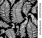 graphic collection of fern... | Shutterstock .eps vector #1029314146