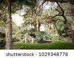 Ein Gedi Botanical Garden ...