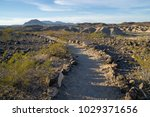 hiking trail at las vegas wash... | Shutterstock . vector #1029371656