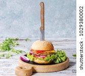 homemade burger in classic bun...   Shutterstock . vector #1029380002
