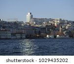 istanbul  turkey   january 6... | Shutterstock . vector #1029435202