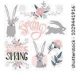 set of beautiful cute spring... | Shutterstock .eps vector #1029441916