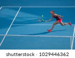 doha qatar  february 15  ... | Shutterstock . vector #1029446362