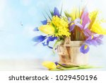 spring flowers for mothers day... | Shutterstock . vector #1029450196