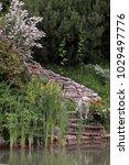 summer  in the garden near the... | Shutterstock . vector #1029497776