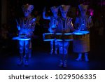 spark drummers at light up... | Shutterstock . vector #1029506335