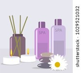 aroma therapy set. a collection ...   Shutterstock .eps vector #1029521032