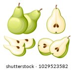 pear and slices of pears.... | Shutterstock .eps vector #1029523582