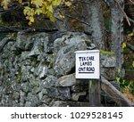 tek care lambs ont road lake... | Shutterstock . vector #1029528145
