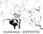 abstract background. monochrome ... | Shutterstock . vector #1029535702