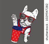 a beautiful dog with glasses.... | Shutterstock .eps vector #1029547282
