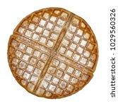 empty belgium waffle base with... | Shutterstock . vector #1029560326
