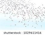 spring sky and a flock of birds ... | Shutterstock . vector #1029611416