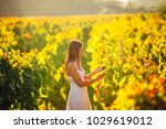 smiling elegant woman in nature.... | Shutterstock . vector #1029619012