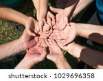 group of hands of different... | Shutterstock . vector #1029696358