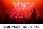 happy people dance in nightclub ... | Shutterstock . vector #1029720952