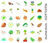 natural riches icons set.... | Shutterstock .eps vector #1029723556
