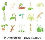 plant icon set. cartoon set of... | Shutterstock .eps vector #1029723808