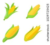 maize icon set. cartoon set of... | Shutterstock .eps vector #1029725425