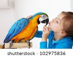 Stock photo portrait of a kid girl with her domestic ara parrot 102975836