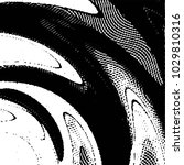 black and white grunge stripe... | Shutterstock . vector #1029810316