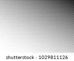 halftone background. points...   Shutterstock .eps vector #1029811126