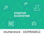 business illustration showing... | Shutterstock . vector #1029836812
