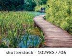 nice morning view of plitvice... | Shutterstock . vector #1029837706