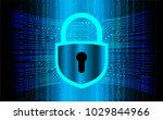 safety concept  closed padlock... | Shutterstock .eps vector #1029844966