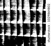 black and white grunge stripe... | Shutterstock .eps vector #1029864802