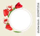 Frame With Red And White Tulip...