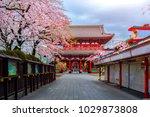 sensoji ji temple in asakusa is ... | Shutterstock . vector #1029873808