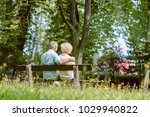 rear view of a romantic elderly ... | Shutterstock . vector #1029940822