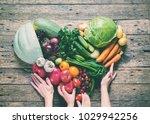 care of health female child... | Shutterstock . vector #1029942256