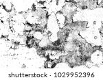 abstract background. monochrome ... | Shutterstock . vector #1029952396