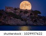 full moon over the old castle... | Shutterstock . vector #1029957622
